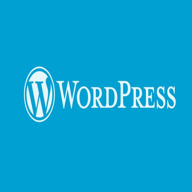 وردپرس برای طراحی سایت