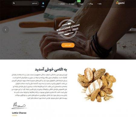 فروشگاه اینترنتی نان باگت ، در رشت ( طراحی سایت )